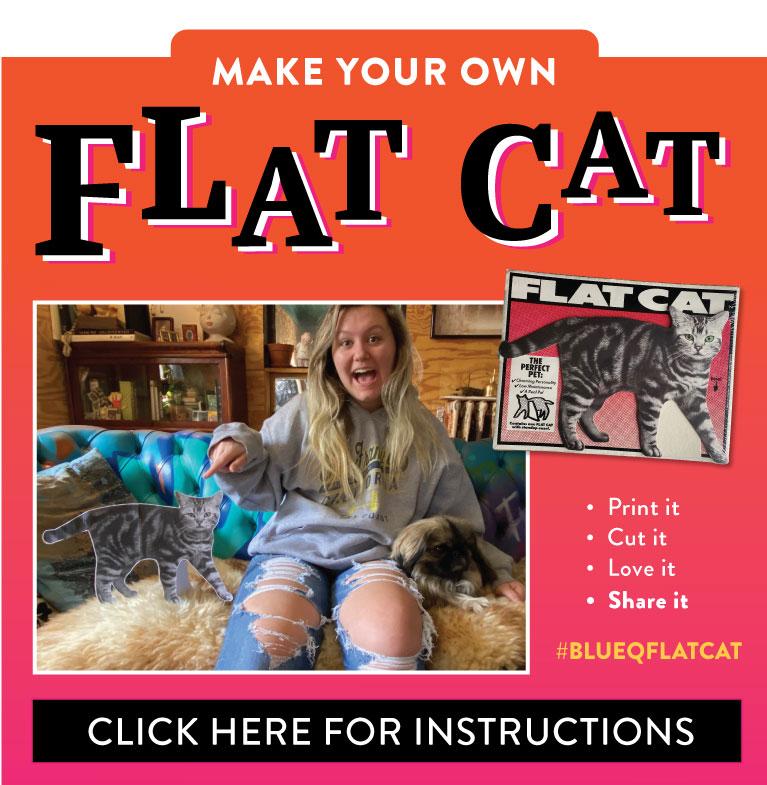 Free Blue Q Flat Cat!